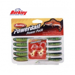 kit berkley walleye