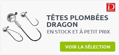 article peche carnassiers dragon